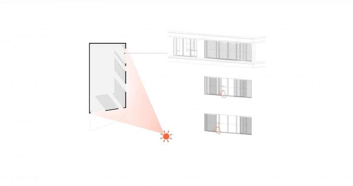 cedrus- diagram-sepinnoud