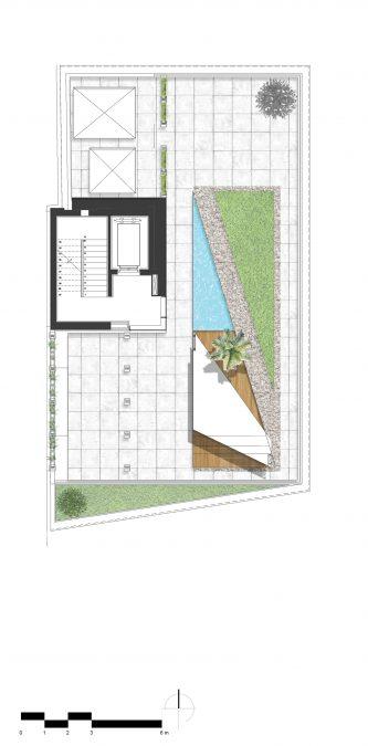 sepinood-cedrus architecture